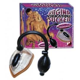 Vibracijska vaginalna črpalka