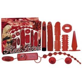 Komplet erotičnih pripomočkov Red roses