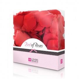Listi vrtnic Red
